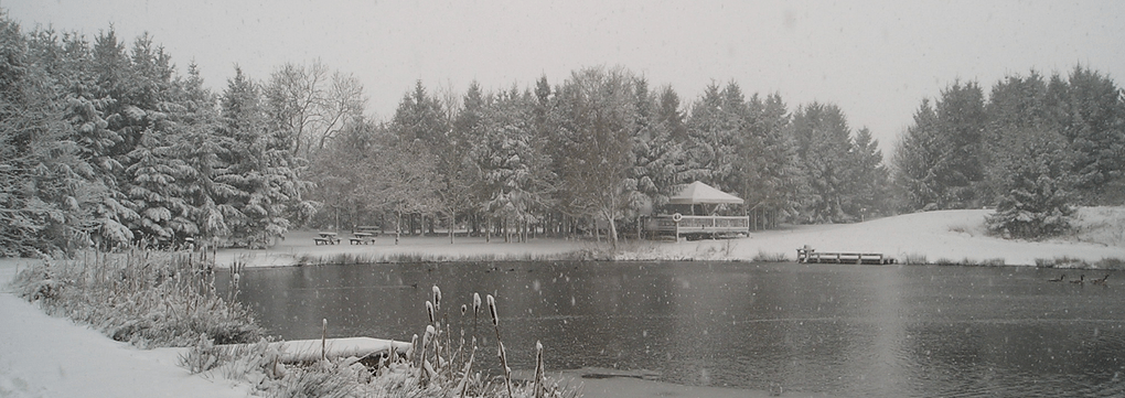 Winter At Lenches Lakes